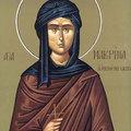 Sfanta Macrina