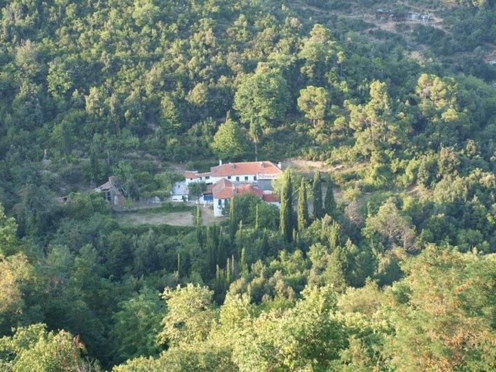 Chilia Axion Estin din Muntele Athos