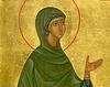 Sfanta Gorgonia