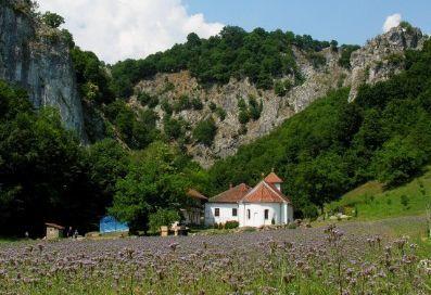 Manastirea Vratna