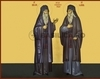Sfintii Cuviosi Daniil si Misail de la...