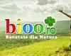 Protejati-va sanatatea cu Salvestrol si Biobran 1000