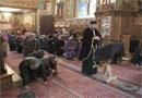 Hirotonia episcopului in ritul liturgic ortodox si in cel armean - studiu comparativ