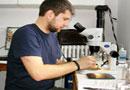 Embrioni manipulati si gene programate