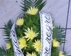 Jerba crizanteme galbene