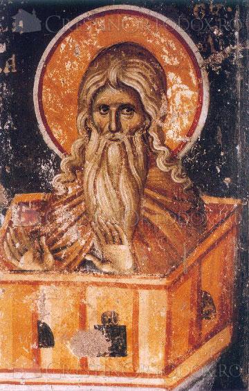 Sfantul Daniil Stalnicul
